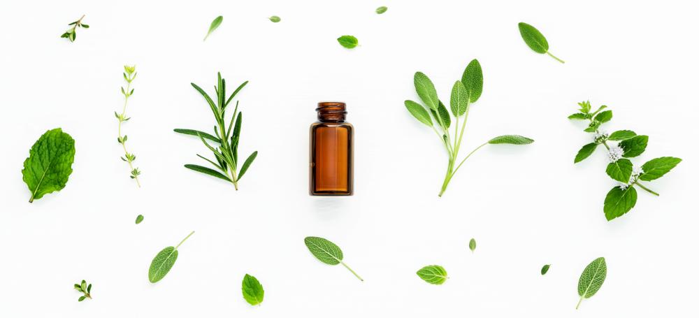 herbs_header_2B